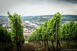 Wurzburg 2014-54